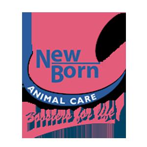 logo-n4