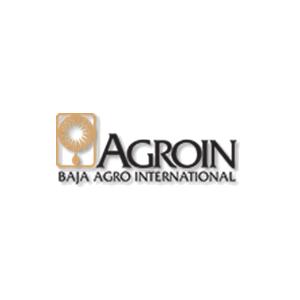 logo-n5